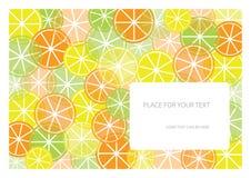 Het frame van de kleur met vruchten en plaats voor uw tekst stock illustratie