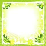 Het frame van de lente Stock Fotografie