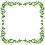 Het frame van de maretak Stock Foto's