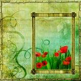 Het frame van de papaver Stock Fotografie