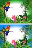 Het Frame van de papegaai stock illustratie