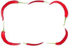 Het frame van de peper Royalty-vrije Stock Foto
