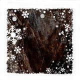 Het frame van de sneeuw achtergrond Stock Afbeeldingen