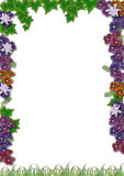Het frame van de vegetatie Royalty-vrije Stock Fotografie