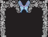 Het frame van de vlinder Stock Foto's