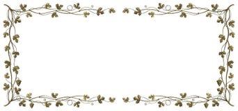 Het frame van de wijnstok Stock Fotografie