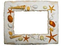 Het frame van de zeeschelp met het knippen van weg Stock Afbeeldingen