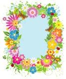 Het frame van de zomer Royalty-vrije Stock Afbeelding