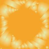 Het frame van de zonnebloem Stock Fotografie
