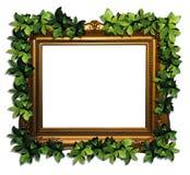 Het frame van Eco Royalty-vrije Stock Foto
