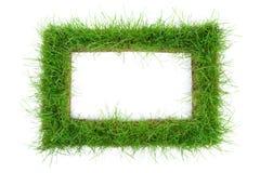Het frame van het gras op witte achtergrond royalty-vrije stock afbeelding