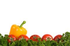 Het frame van groenten en greens Royalty-vrije Stock Foto's