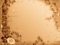 Het frame van Grunge met bloem Stock Afbeeldingen
