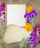 Het frame van Grunge met viooltje en document royalty-vrije illustratie
