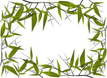 Het frame van het bamboe Royalty-vrije Stock Fotografie
