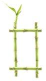 Het Frame van het bamboe stock fotografie