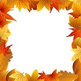 Het Frame van het Blad van de herfst op witte achtergrond Royalty-vrije Stock Foto