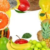 Het frame van het fruit Stock Afbeelding