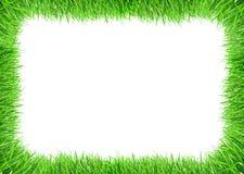 Het frame van het gras royalty-vrije stock afbeeldingen