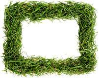 Het frame van het gras Royalty-vrije Stock Afbeelding