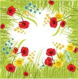 Het frame van het gras met bloemen Royalty-vrije Stock Afbeeldingen