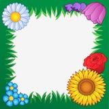 Het frame van het gras met bloemen 2 Stock Foto's
