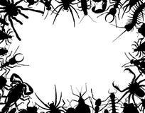 Het frame van het insect Royalty-vrije Stock Foto's