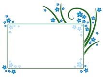 Het frame van het vergeet-mij-nietje Stock Fotografie
