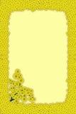 Het Frame van mimosa's Stock Foto