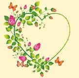 Het frame van rozen Stock Fotografie