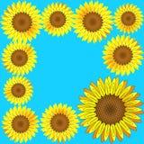 Het frame van zonnebloemen. Vector. Stock Afbeelding