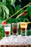 Het fruit bracht aanin lagen geschotene cocktails op ijs, op een groene aardachtergrond Sluit omhoog Geïsoleerde stock foto's