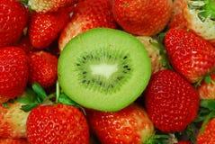 Het fruit en de aardbei van de kiwi Stock Foto