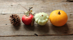 Het Fruit en de Groenten van de herfst Royalty-vrije Stock Foto