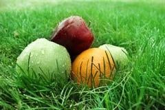 Het fruit op gras Stock Afbeeldingen