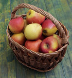 Het fruit van Apple Stock Fotografie