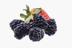 Het Fruit van Blackberry en van de Aardbei Stock Afbeelding