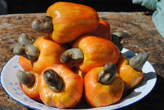 Het Fruit van Caju Royalty-vrije Stock Foto's