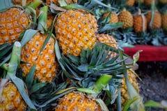 Het fruit van de ananas Royalty-vrije Stock Afbeeldingen