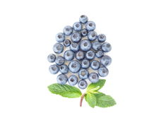Het fruit van de bosbes Stock Afbeelding