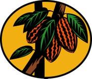 Het fruit van de cacao of van de cacao op boom Royalty-vrije Stock Afbeeldingen