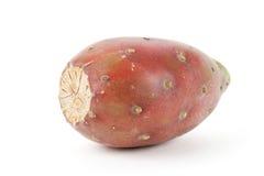 Het Fruit van de cactus Royalty-vrije Stock Fotografie