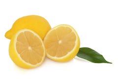 Het Fruit van de citroen stock afbeelding