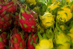 Het Fruit van de draak Stock Afbeeldingen