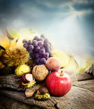 Het fruit van de herfst Royalty-vrije Stock Foto's