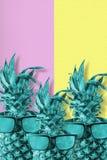 Het fruit van de kleurenananas met het art. van de zonnebrilzomer Royalty-vrije Stock Afbeeldingen