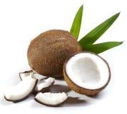Het fruit van de kokosnoot stock afbeeldingen