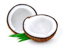 Het fruit van de kokosnoot dat op wit wordt geïsoleerde royalty-vrije stock afbeelding