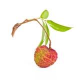 Het fruit van de lychee Royalty-vrije Stock Afbeeldingen