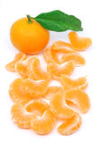 Het fruit van de mandarijn Stock Afbeeldingen